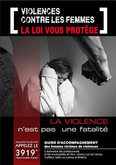 Violences faites aux femmes2017
