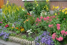 Concours des jardins et façades fleuris