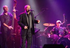 Michel Jonasz en concert au Zéphyr