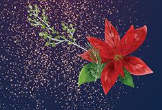 Animation déco de Noël au marché