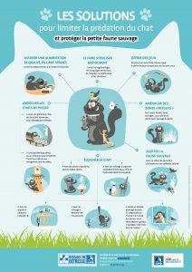 Affiche : Solutions pour limiter la prédation du chat